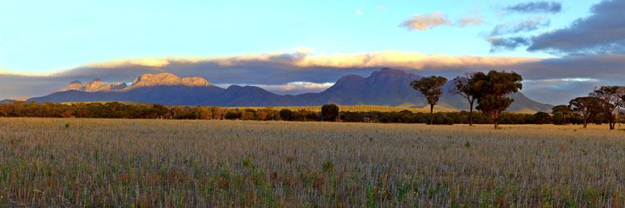 bluff-knoll-panorama